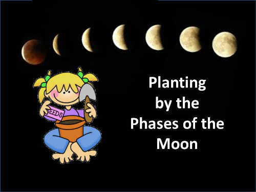 planting by moon